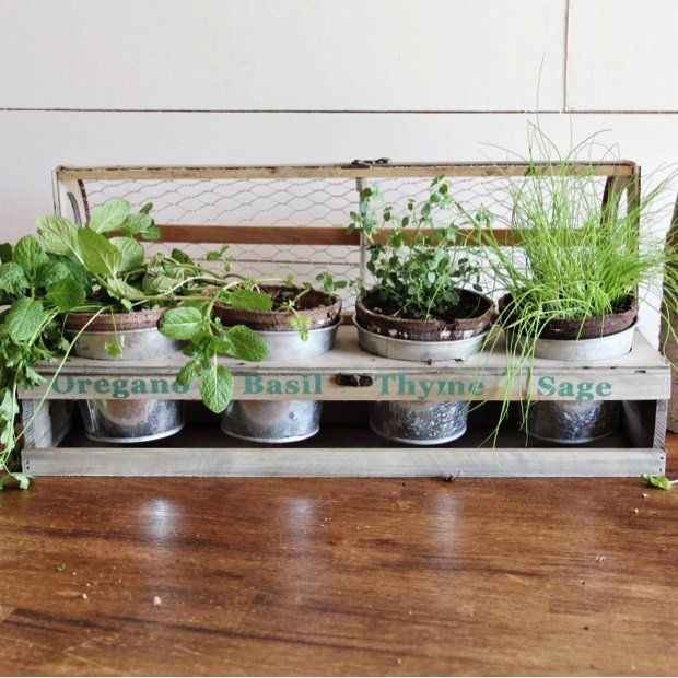 Large Herb Planter Box With Mesh Top