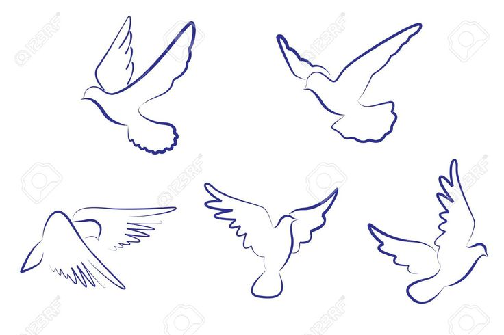 Dove Stock Vector Illustration And Royalty Free Dove Clipart