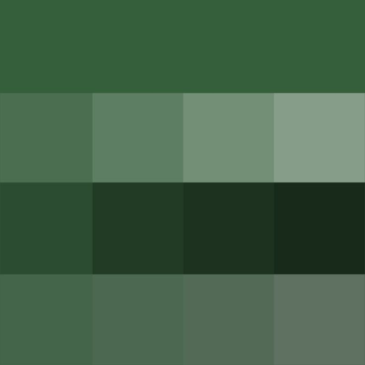 #Hunter #Green - Hue ( pure color ) with Tints (hue + white), Shades (hue + black) and Tones (hue + grey, which desaturates the Hue)