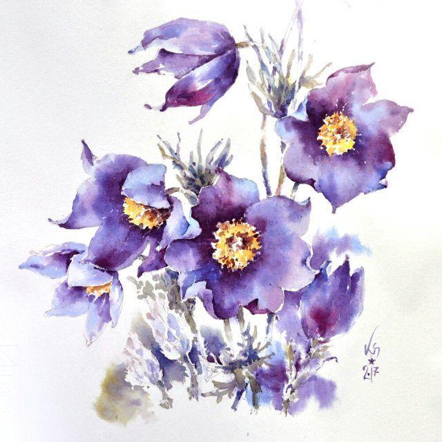 Исчезающая красота из Красной книги, сон-трава) И задача себе - не цветок изобразить, а то синее сияние, что весною заливает леса ☆ #ботанический_баттл #ботанический_баттл_ирина_сарт. Тюбик для масштаба :)