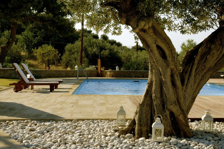 Xenon Estate villas in Spetses - extra large swimming pool 17m x 9m.  www.xenonestate.gr
