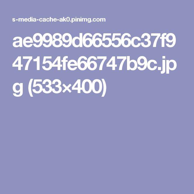 ae9989d66556c37f947154fe66747b9c.jpg (533×400)
