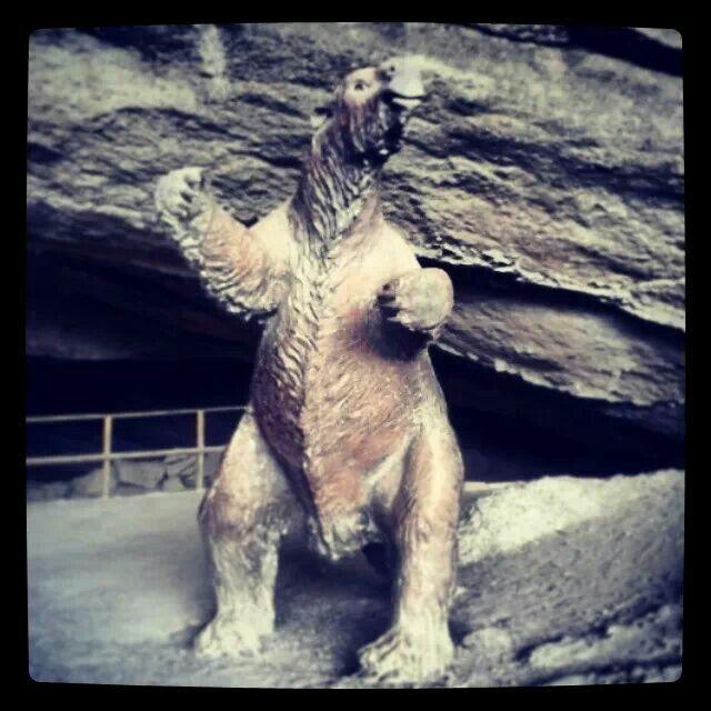 Cueva Milodón. Puerto Natales