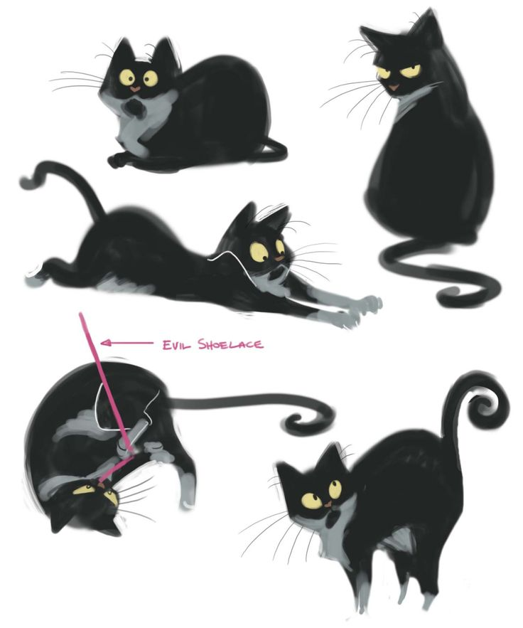 211: Page of Papi Had some down time at work this morning so I did some quick sketches of my kitty Papillon.