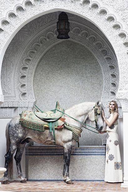 Persian beauty!