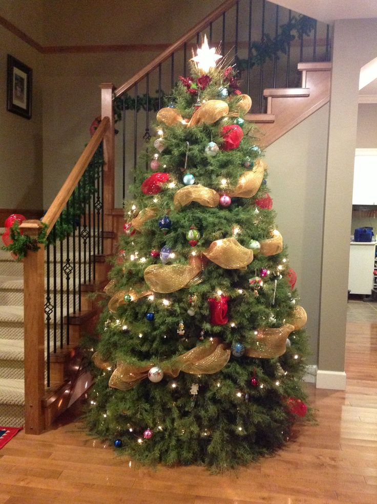 Our big tree