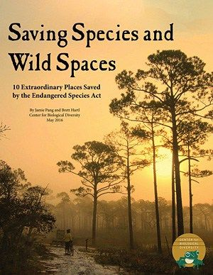 """Saving Species and Wild Places"" report."