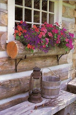 Picture of Elegance Blog: Small Gardens above the Ground