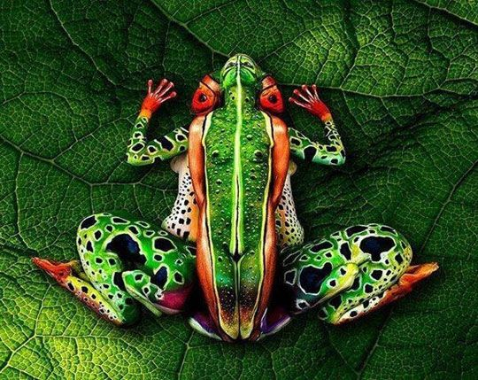 Body painting art… I had to stare at it for a while to figure out what was what.