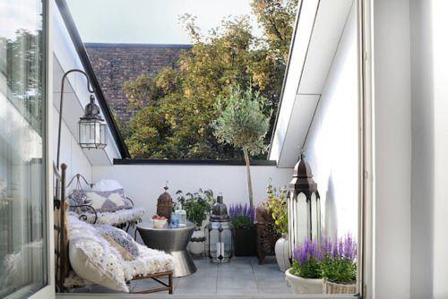 urban gardening / balcony bliss
