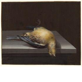 Elisabeth Christina Matthes, Toter Zeisig auf einer Tischplatte