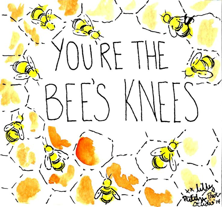 You're the bee's knees #lilly5x5: Knees Lilly5X5, Stuff, Lilly ...