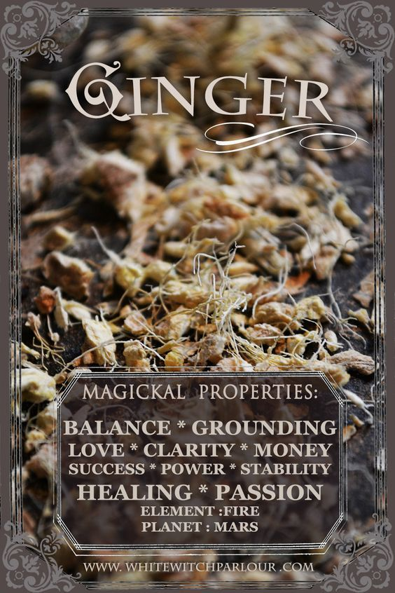 Magickal Properties of Ginger | Witches Of The Craft®