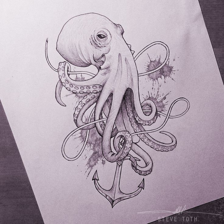 166 best octopus images on Pinterest Octopus tattoos Drawings