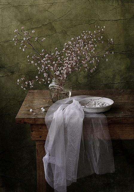 lovely delicate flowers..
