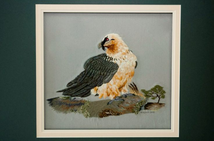 Bearded Vulture (Lammergeier) embroidered from photo
