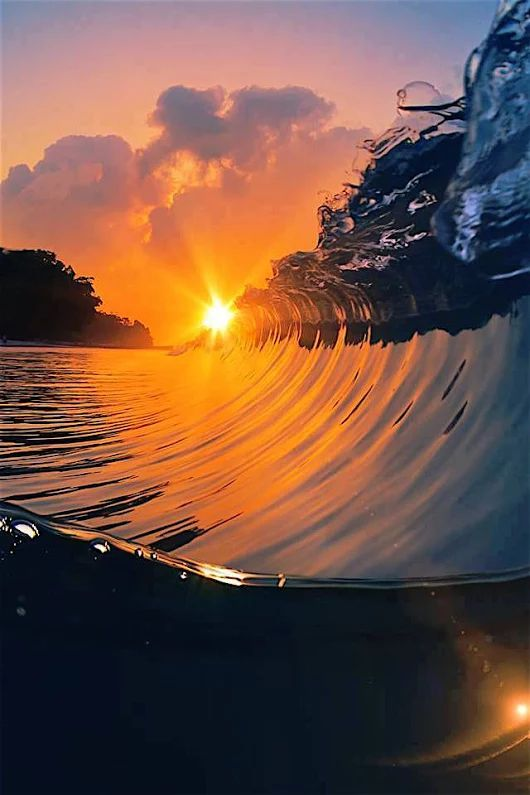 Hobie Sunset Polarized with awesome Crest of Wave Breaking!