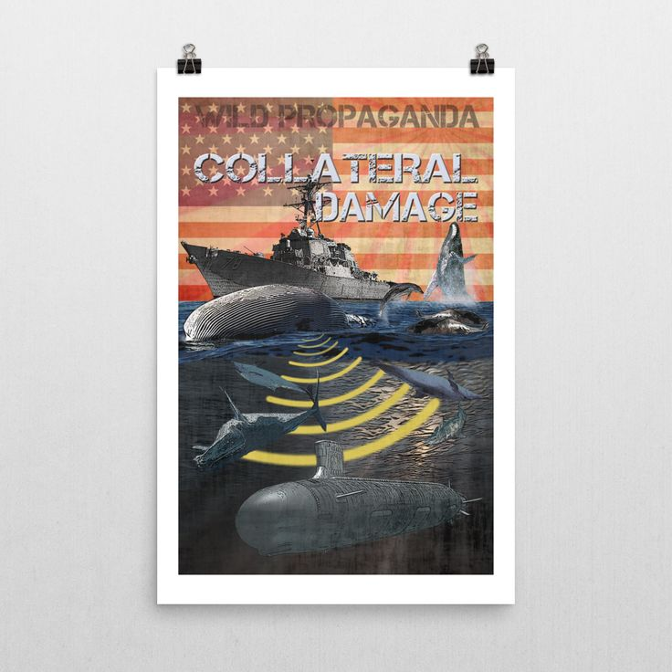 Whales - COLLATERAL DAMAGE - Poster