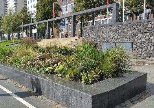 Stenen muurtje bankje plantenbak, Rotterdam