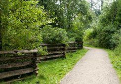 Coquitlam- Blue Mountain Park