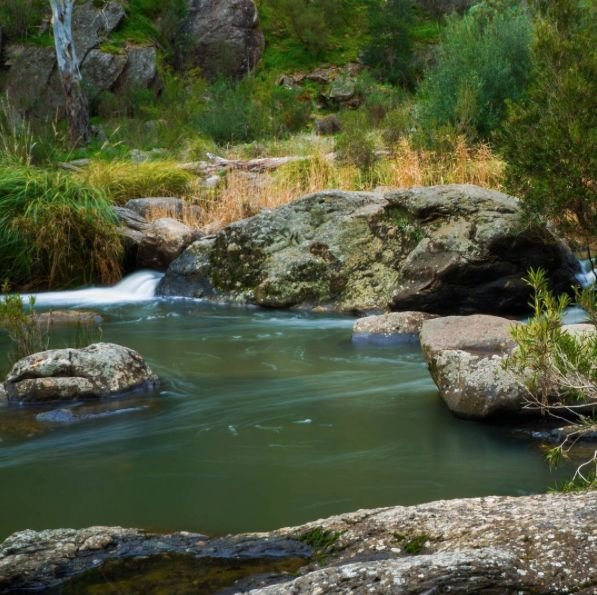 Did you know the Onkaparinga River is South Australia's second longest river? It flows through two different routes out to sea and creates a number of gullies, gorges and wetlands. Have you visited the National Park? Click on the image to find out more!
