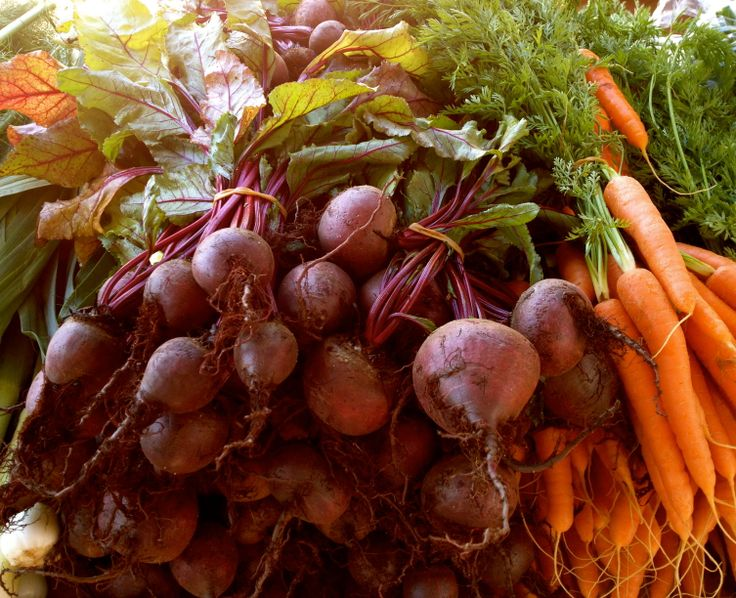 Yummy fresh produce from GMT