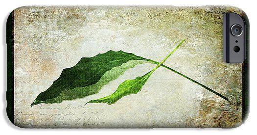 Green IPhone 6s Case featuring the photograph Green Balance by Randi Grace Nilsberg