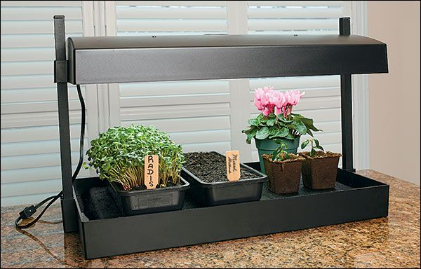 Grow light indoor garden lee valley tools 120 http for Indoor gardening with cats