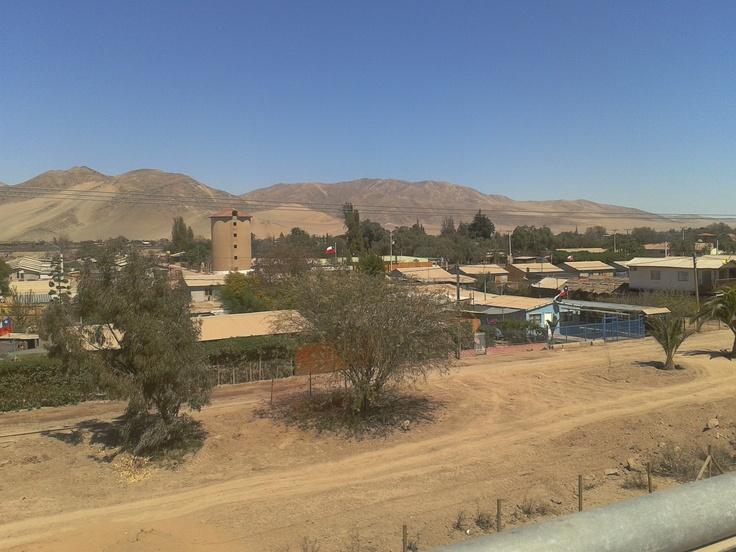 Hacienda San Pedro, Ruta 5 Norte entre Copiapó y Caldera. Foto de Diego Castillo G.
