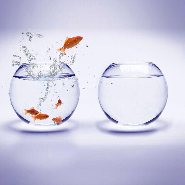 #Цель – #Мотивация - #Результат  На пути к цели никогда не останавливайтесь. Ваши цели будут достигнуты, если вы будете верить в себя, будете много и упорно работать.  1. #Уверенность. Никогда не сомневайтесь в себе. Если до вас кто-то смог это сделать, значит, получится и у вас.  2. #Упорство. Стройте свой бизнес по принципу: сегодня упорство - завтра богатство.  3. #Знания. Учитесь у тех, кто уже добился значительных результатов.  #ЦентральнаяАптека