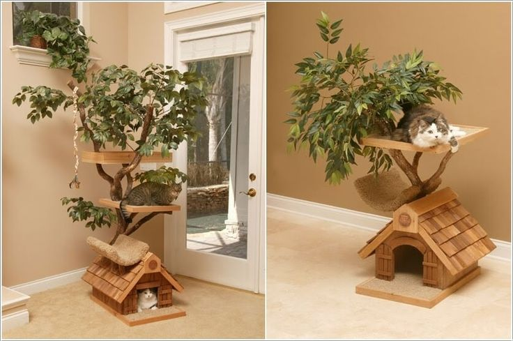 Nice Inspiration Ideas Furniture Projects Cool Cat Tree Furniture Designs  Your Will Love 1 With .