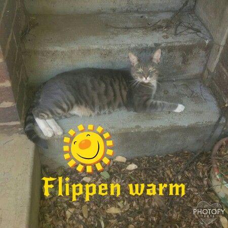 Phew hot day!