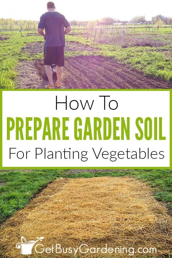 5a988a0e2ed0d54a96c3730f1e7f780f - How To Prepare Soil For Next Year Gardening
