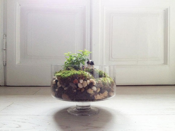 Boule de Verte by Elena Bellusci  on YYELLOW MAGAZINE [www.yyellow.com]