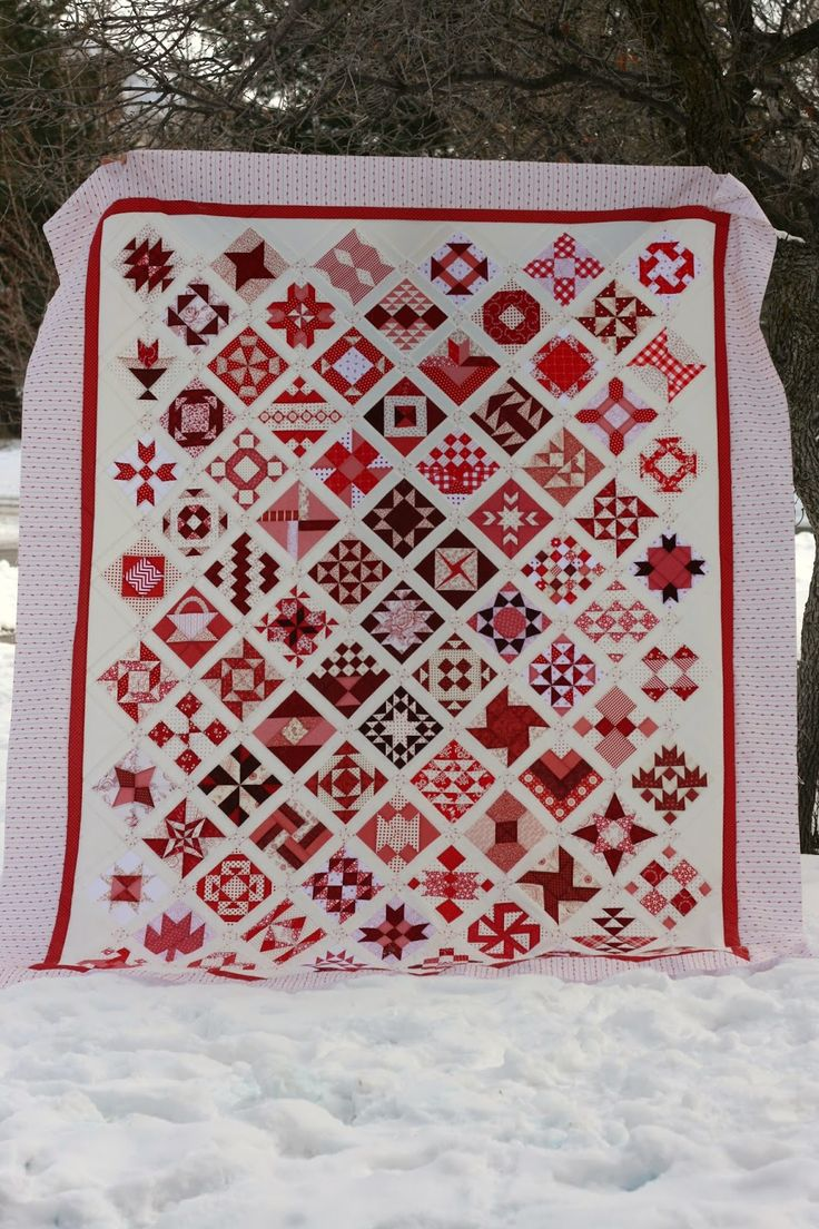 Amber's Farmers Wife quilt finish...AMAZING