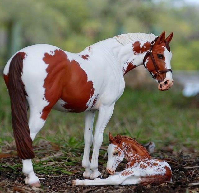 картинки лошадей брейер на природе спальня большой