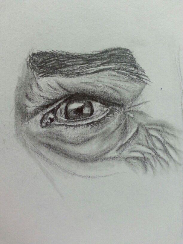 my drawing of old man eye