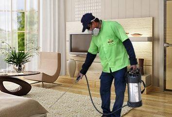 Leading pest control service providers in Dubai provides effective pest control service like termite control,cockroach control,rat control &fumigation service