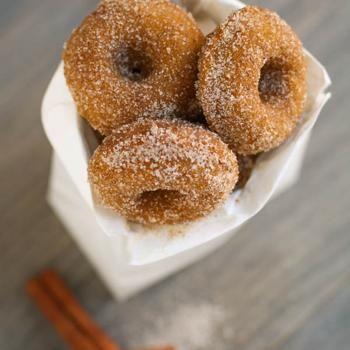 Pumpkin Spice Mini-Donuts Recipe - Garnish with Lemon & ZipList