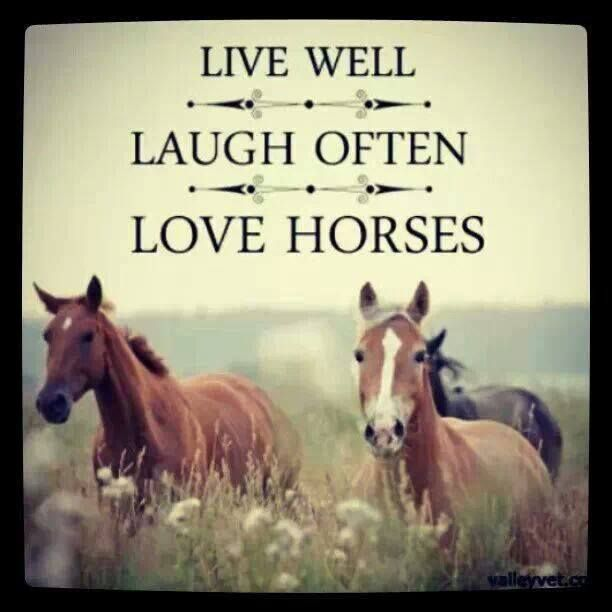 Live well, laugh often, love horses. always!
