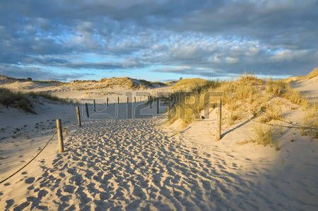 Route through moving dunes in Slowinski National Park just before sunset, Poland photo