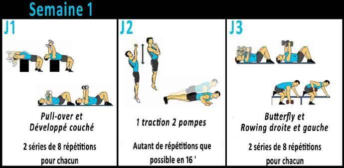 3 Mois pour prendre du volume musculaire sur le haut du corps grâce à ce programme de musculation à suivre chez vous avec haltères et barre de traction