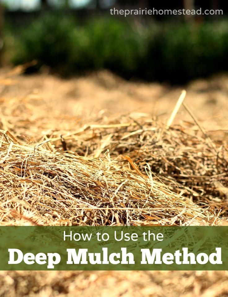 Deep Mulch Gardening , 11 Best Garden Porn Images By Single Dad Living On Pinterest