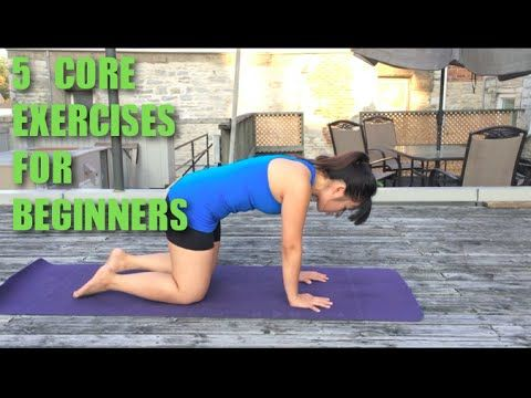 5 Beginner Core Strength Exercises - The best thing about this video is that she's actually doing the exercises correctly. For example, you should not be able to lift your knee very high while doing clam shell and the knee should never lift as high as the hip socket while doing bird dog.