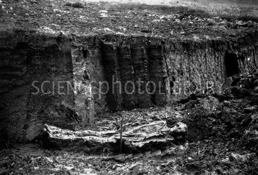Excavation of an unidentified bog body in 1896