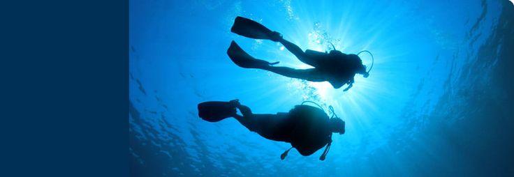 DAN Divers Alert Network Asia-Pacific : Membership and Insurance for Scuba Divers