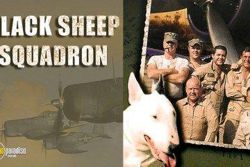 "Classic TV Series Review: ""Baa Baa Black Sheep"" (!976-1978)"