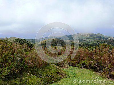 Road to Porto Moniz north of Madeira Island in the Atlantic Ocean in Portugal. Volcanic Cliffs.