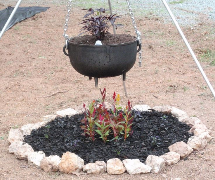 A black cauldron for a Gothic Garden! This is the centerpiece of the garden. More black plants and flowers to be planted.