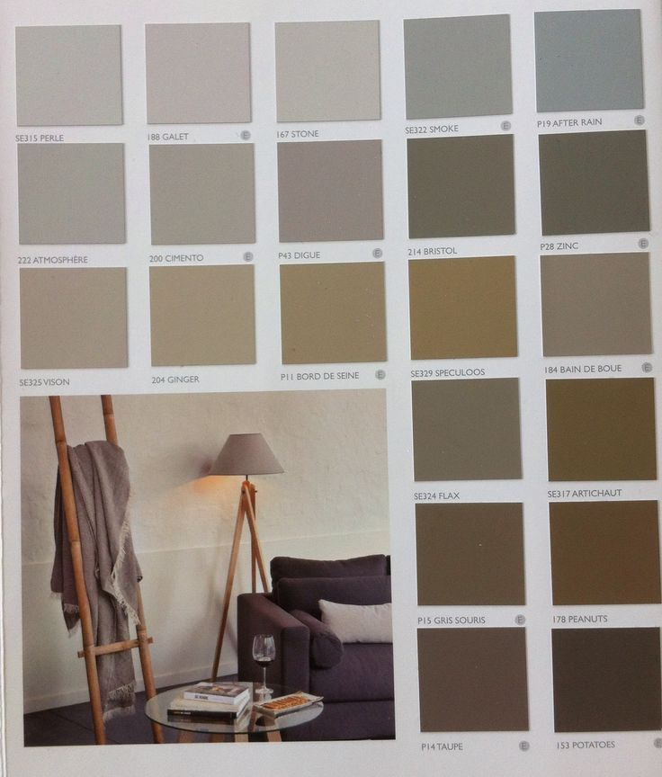 17 Images About Salon On Pinterest Grey Walls Living Room Color Schemes And Pastel